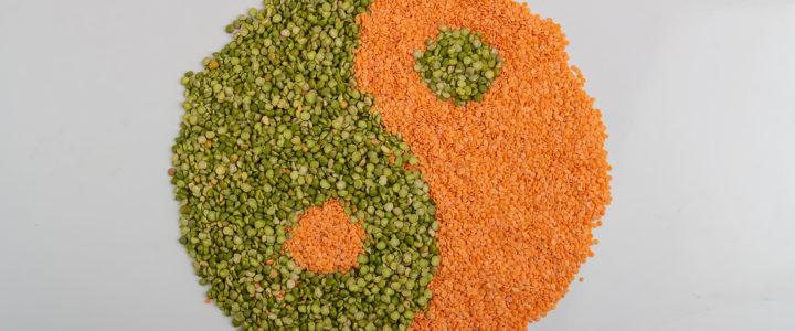 Soczewica – cenna roślina strączkowa